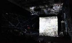 BingMag.com Scientists turned spider webs into music and achieved amazing results