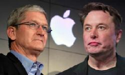 BingMag.com Ilan Musk was looking for Apple CEO but was hit hard by Tim Cook