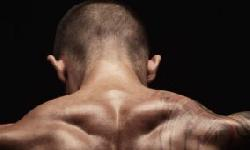 BingMag.com How to have a more muscular neck by strengthening the muscles?