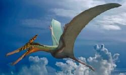 BingMag.com A fossil of a Jurassic flying dragon has been discovered in Chile