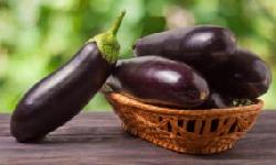 BingMag.com Eggplant; Properties, nutritional value, side effects and everything else you need to know